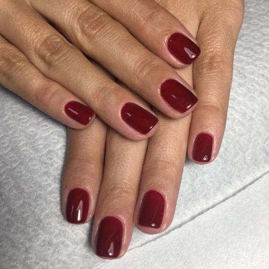 Look at me #beograd Manikir Manikir + Shellac Nokti