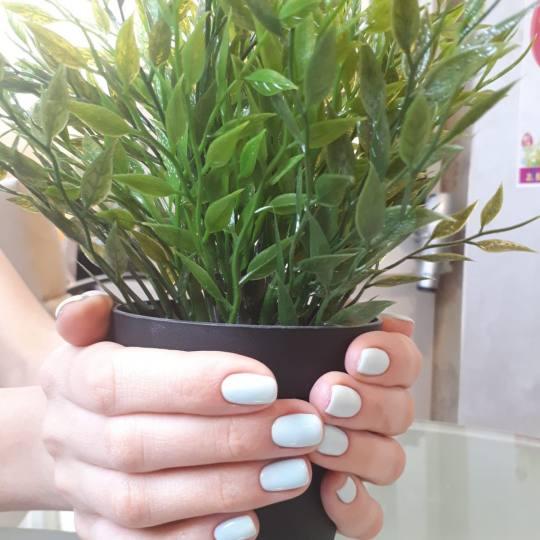 Bibi beauty centar #beograd Manikir Manikir + lakiranje noktiju manikir